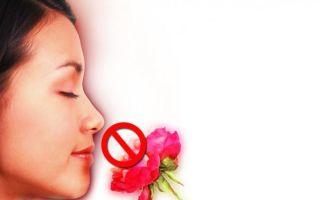 Потеря обоняния — как восстановить после болезни, все о гомеопатии