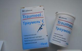 Траумель С таблетки — показания к применению, все о гомеопатии