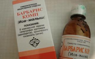 Гомеопатические препараты для лечения золотистого стафилококка — показания и противопоказания, все о гомеопатии