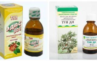 Масло туи — наиболее полный обзор, все о гомеопатии