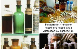 Что такое мания преследования и как ее лечить гомеопатией — все о гомеопатии