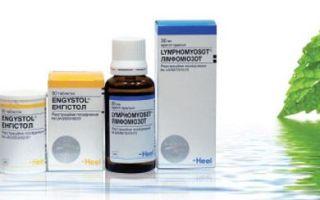Топ-20 самых популярных препаратов фирмы Хеель (heel) — подробное описание, все о гомеопатии