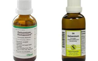 Гельземиум (Gelsemium) — желтый жасмин, все о гомеопатии