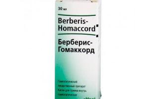 Берберис гомаккорд — как правильно использовать, дозировка, все о гомеопатии