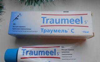 Траумель с мазь — все о гомеопатии