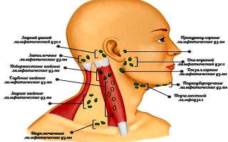 Боль под ухом и в шее: что это значит и что делать? — все о гомеопатии